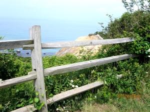 I like fences
