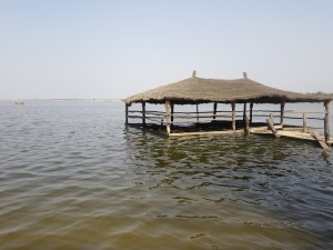 Outside of Dakar, there is a lake famous for appearing to be a rose color (but not in April when we were there). There are several outdoor restaurants in the countryside, and this is one that the water apparently took over!